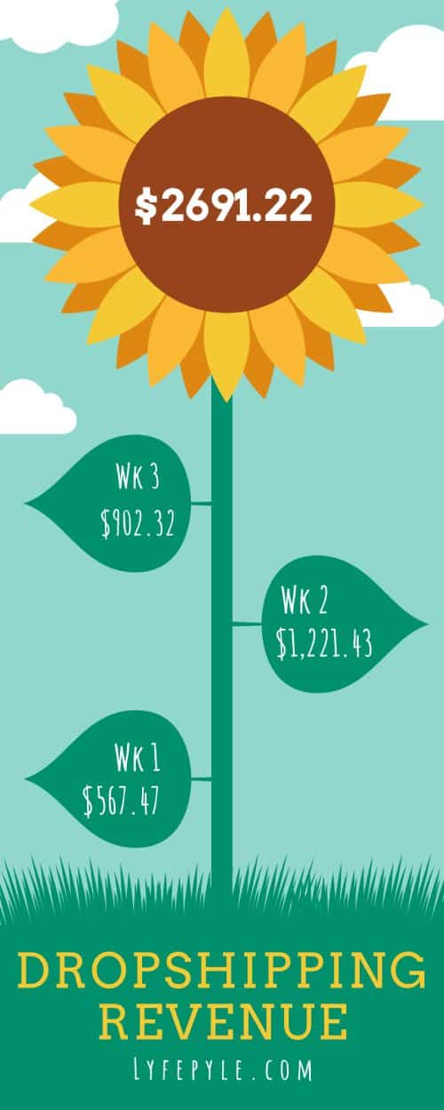 Infographic of how much money made dropshipping each week